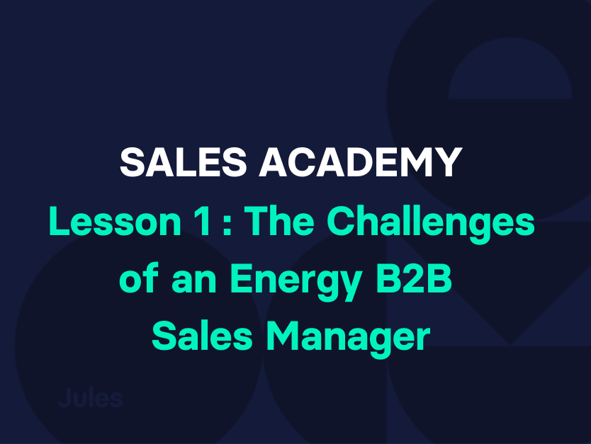 Lesson 1 : The Challenges of an Energy B2B Sales Manager